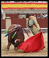 Curro Diaz.jpg