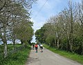 Cyclists at Llanfigael - geograph.org.uk - 1288748.jpg