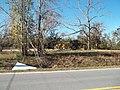 Cypress FL Norton House site05.jpg