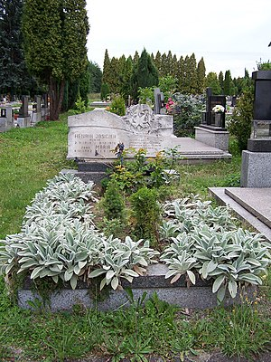 1976 in poetry - Grave of Polish journalist, poet, writer and dissident Henryk Jasiczek.