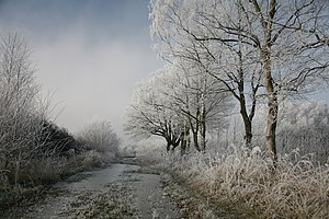 Hoarfrost covered winter scene in northern Germany