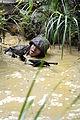 Defense.gov photo essay 090821-M-7344B-036.jpg
