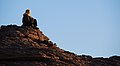Deserto Libico- Tuareg osserva il tramonto sull'Akakus - panoramio.jpg