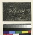 Dessous de forêt (d'après une étude de Théod. Rousseau) (NYPL b14917511-1215223).tiff