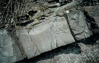 Complete Bouma sequence in Devonian Sandstone (Becke-Oese, Germany ).