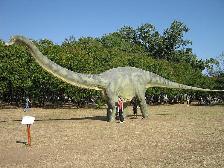 Diplodocus model.jpg