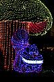 Disney's Electrical Parade (4527536784).jpg