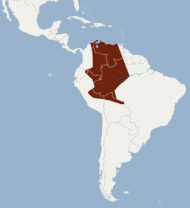 Distribution of Sphaeronycteris toxophyllum.png