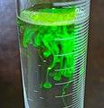 Drops of fluorescein in water 2.jpg