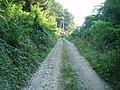 Drumul către fosta Mină de Cupru - panoramio.jpg