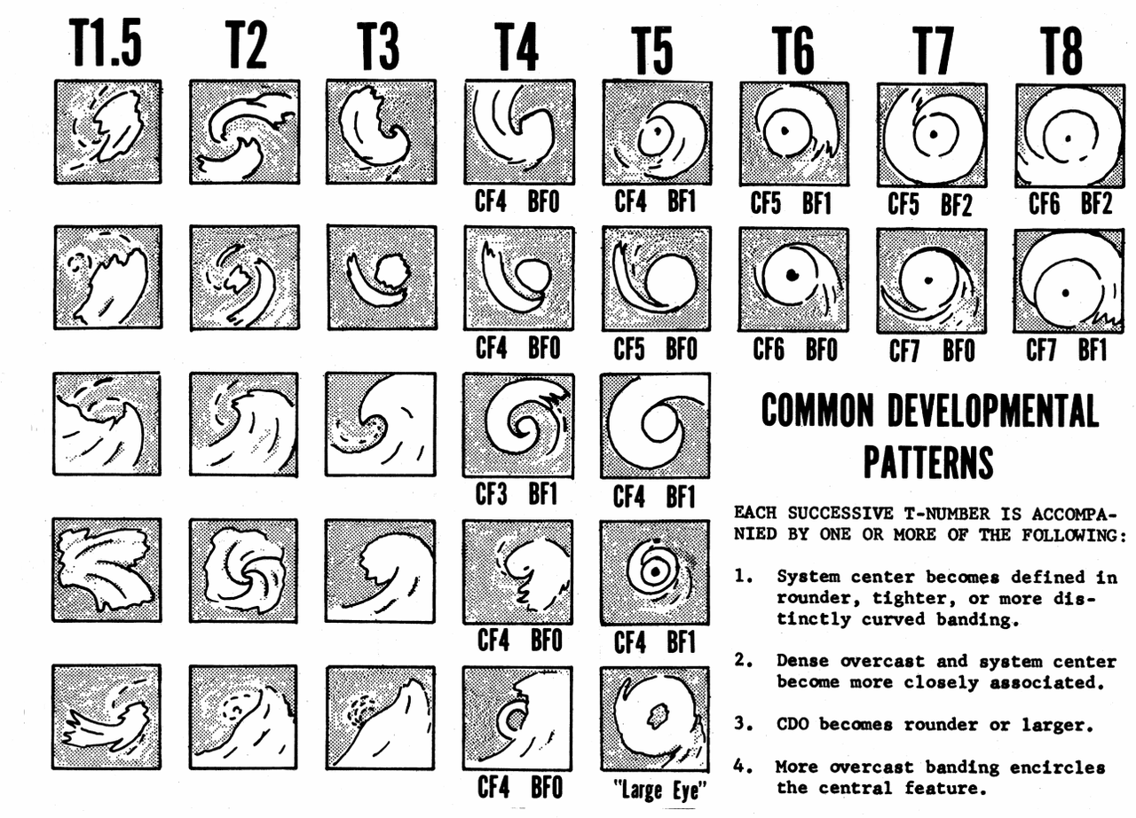This chart shows common developmental patterns for tropical cyclones, and their intensities per the Dvorak technique (NOAA/Vernon F. Dvorak)