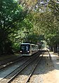 Edhec tramway from Lille Parc Barbieux station.jpg