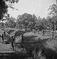 Een militair steekt een beek of sloot over via een boomstam gedekt door andere …, Bestanddeelnr 15826.jpg