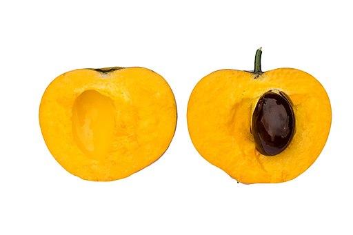 lucuma o fruta huevo, corte transversal