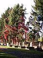 Ehrenfriedhof der Sowjetarmee 5.JPG