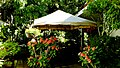 El Salvador - San Salvador, Latin Top Jobs Garden - panoramio (28).jpg