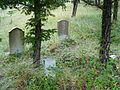 Elkhorn ghost town cemetery 5.jpg