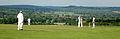 Elsted Cricket.jpg