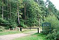 Entrance to Birchden Forest - geograph.org.uk - 1493214.jpg