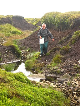 Eroded peat moorland, Bleaklow, Derbyshire