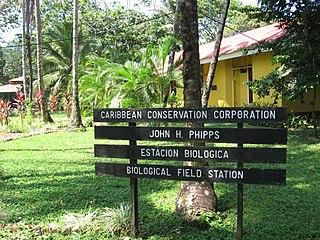 Dr. Archie Carr Wildlife Refuge