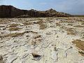 Ethiopie-Exploitation du sel au lac Karoum (1).jpg