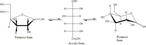 L Glucose Chair Monosaccharide - Wikip...