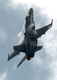 FA-18C vapor LEX and wingtip 2.jpg