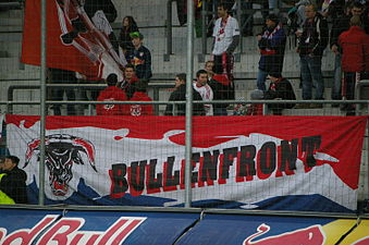 FC Red Bull Salzburg gegen SCR Altach (März 2015) 45.JPG