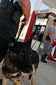 FEMA - 11014 - Photograph by Jocelyn Augustino taken on 09-20-2004 in Florida.jpg