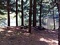 FLT M23 5.44 mi - Bivouac at Lower Pond - panoramio.jpg