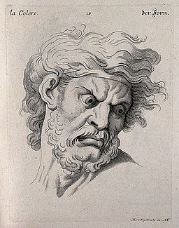 Face of a bearded man expressing anger. Engraving by M. Enge Wellcome V0009359