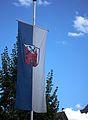 Fahne mit Ortswappen Ladenburg.JPG