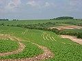Farmland above Chilton - geograph.org.uk - 834323.jpg
