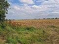 Farmland at TA0432548241 - geograph.org.uk - 46081.jpg