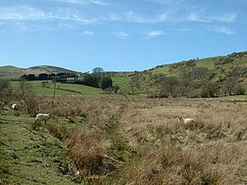 Farmland near Gellioedd - geograph.org.uk - 157764.jpg