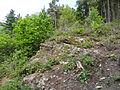 Felsen in der Dehl (Hoch-Weisel) 04.JPG