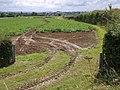 Field beside A303 - geograph.org.uk - 493303.jpg