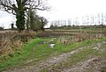 Field beside King's Beck - geograph.org.uk - 1127145.jpg