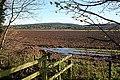 Fields near Dipple - geograph.org.uk - 1568621.jpg