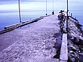 Fish Port - panoramio - Rocky3068.jpg
