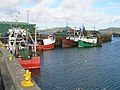 Fishing Boats in the Harbour - geograph.org.uk - 504047.jpg