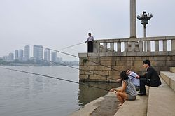 Fishing on the Taedong River 대동강 in Pyongyang (10058598445).jpg