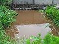 Fishpound1 - panoramio.jpg