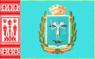 Flag of Krolevets Raion.png