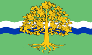 Flag of Nottinghamshire - Flag of Nottinghamshire County Council