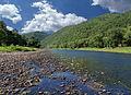 Flickr - Nicholas T - Pine Creek (2).jpg