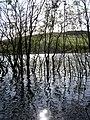 Flooding on Cauldshiels Loch - geograph.org.uk - 987764.jpg