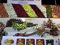 """Flower show""""10.jpg"""