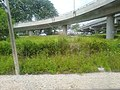 Flyways over Rumput A1.jpg